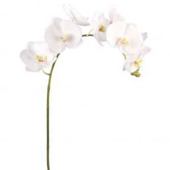artificial-white-orchids