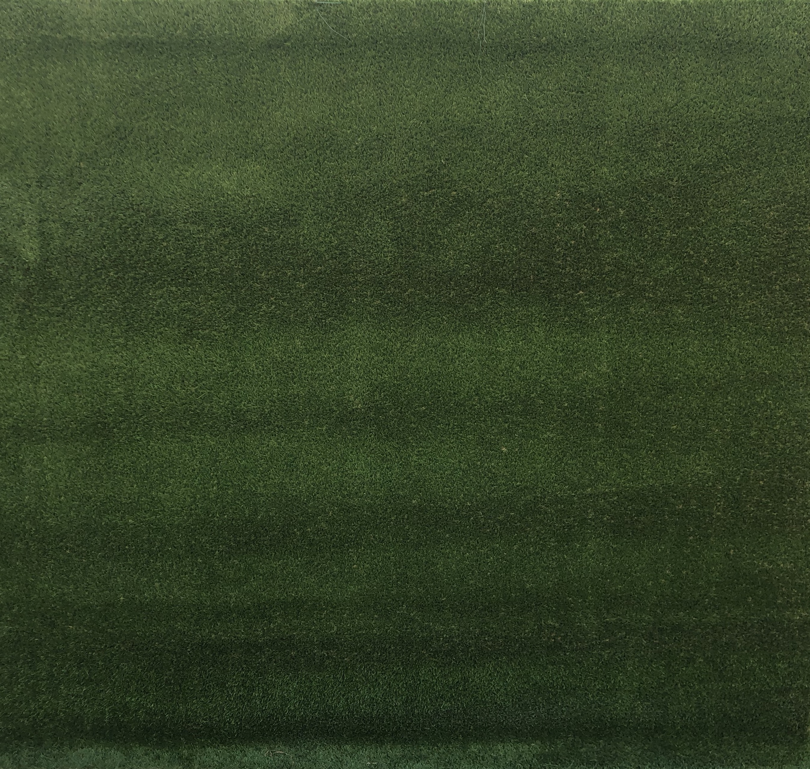grass-backdrop-2m-wide